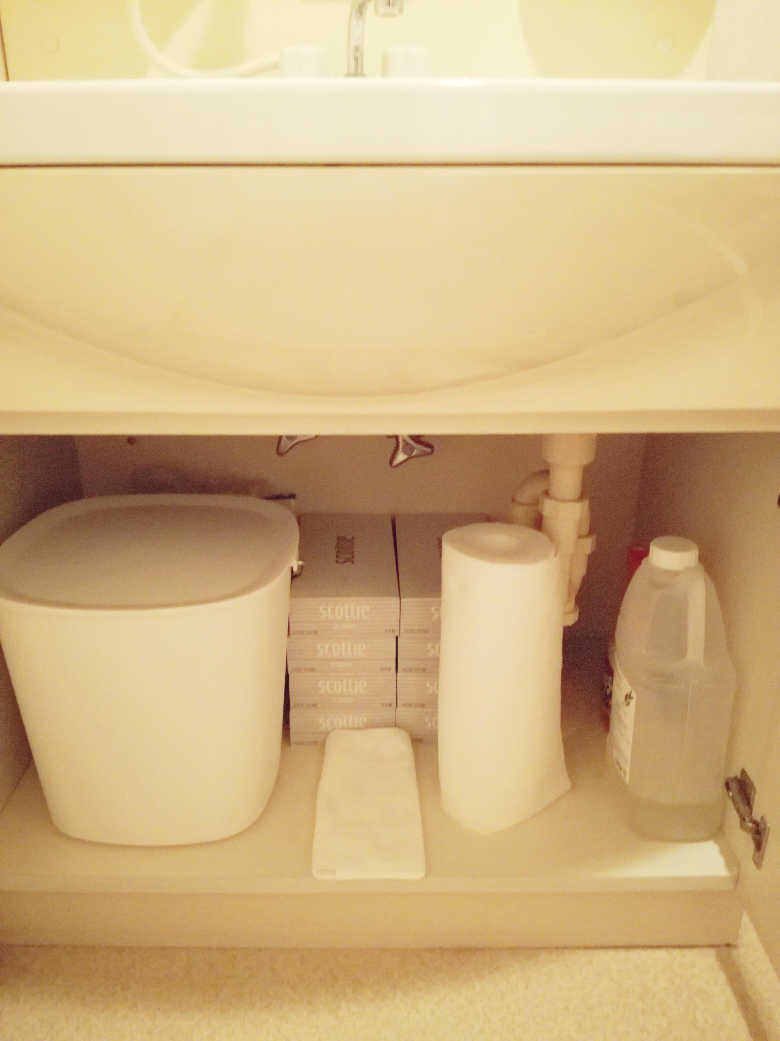 洗面台の下